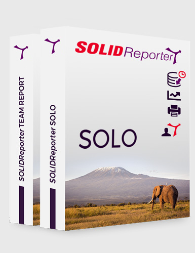 SOLIDReporter SOLO - SOLIDReporter TEAM REPORT